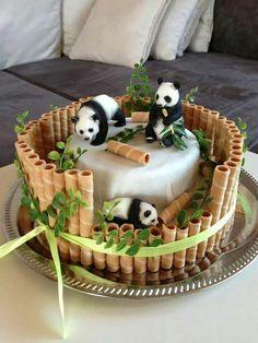 vederea panda