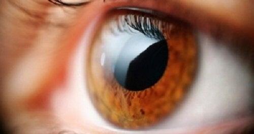 greață și pierderea vederii viziune mică ce este