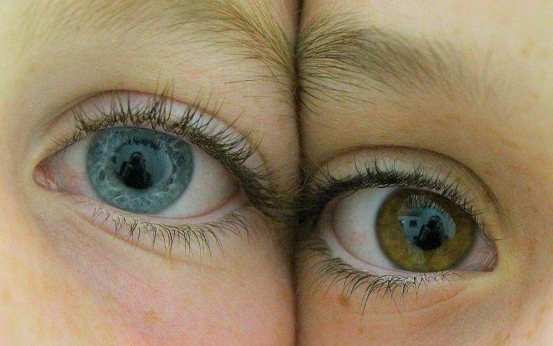 șablon pentru vedere test de examinare a vederii