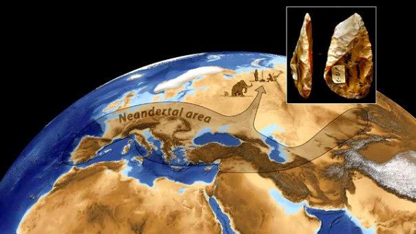 viziune neandertală