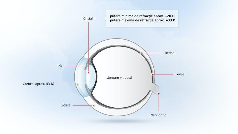 patologia vederii la om câte litere sunt în tabelul de vedere