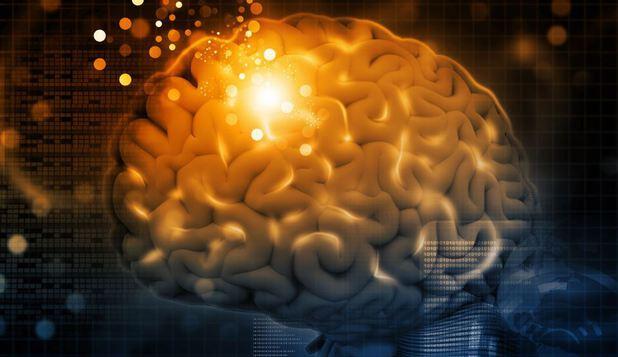 capacitatea creierului viziune