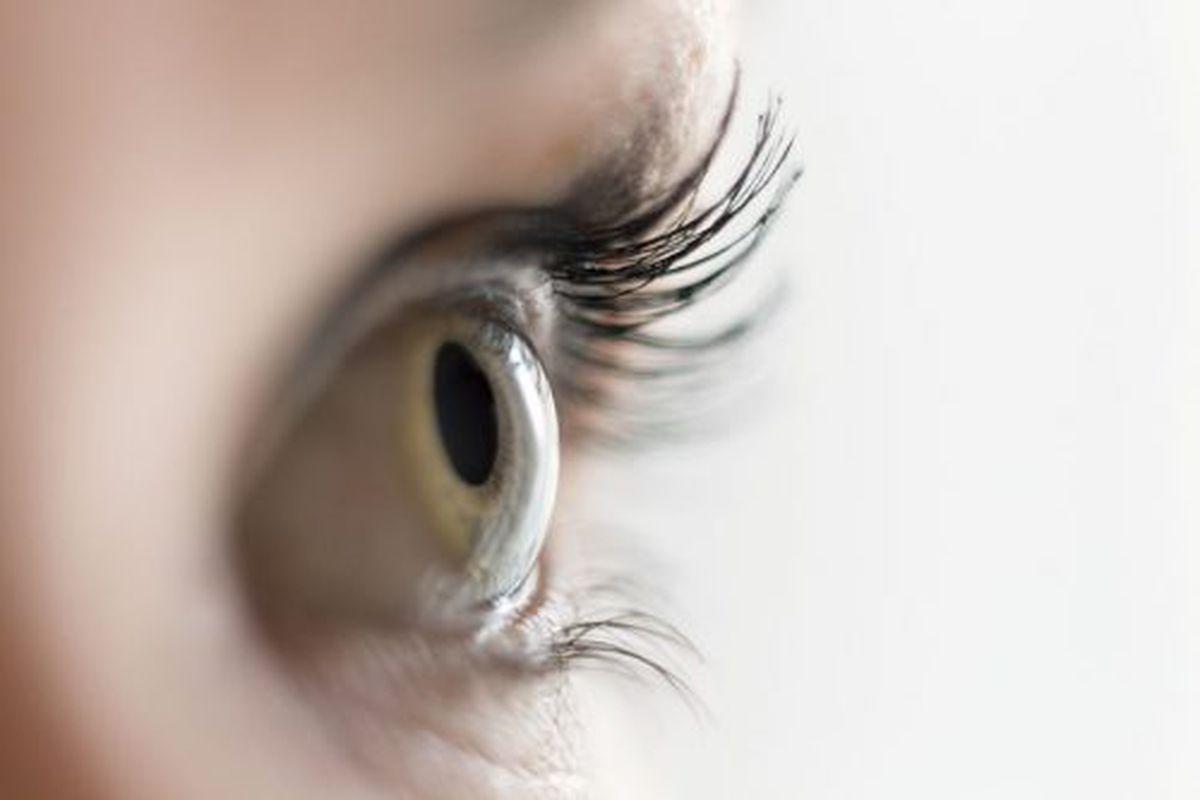zero-urile strică vederea grădini de viziune corectivă