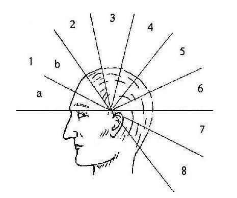 viziune în neurologie
