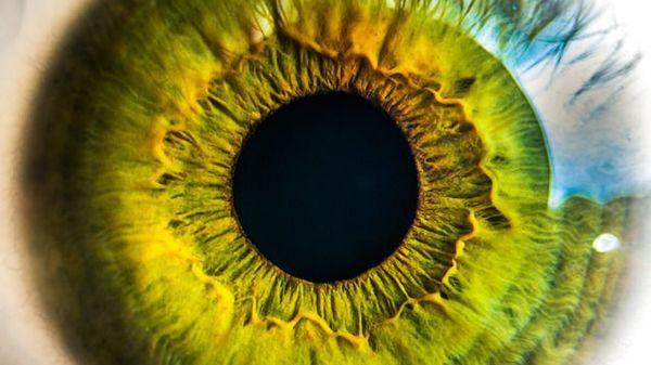îmbunătățirea vederii legată de vârstă jean-claude van damme vision