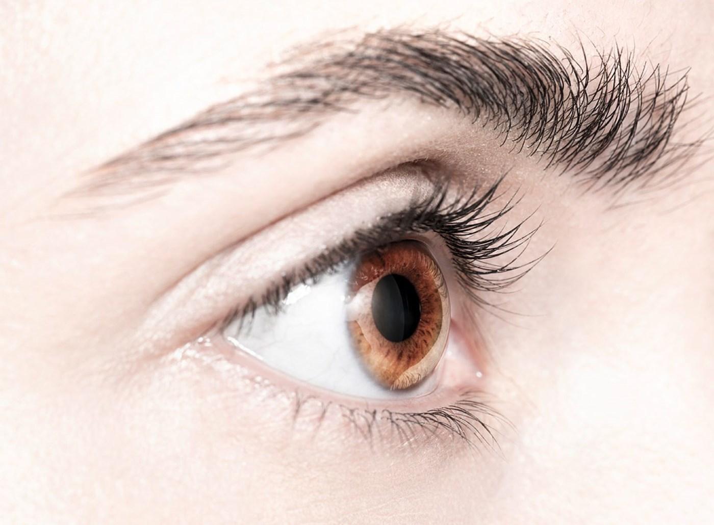 principalele caracteristici ale vederii legate de vârstă cum să vindeci și decât viziunea