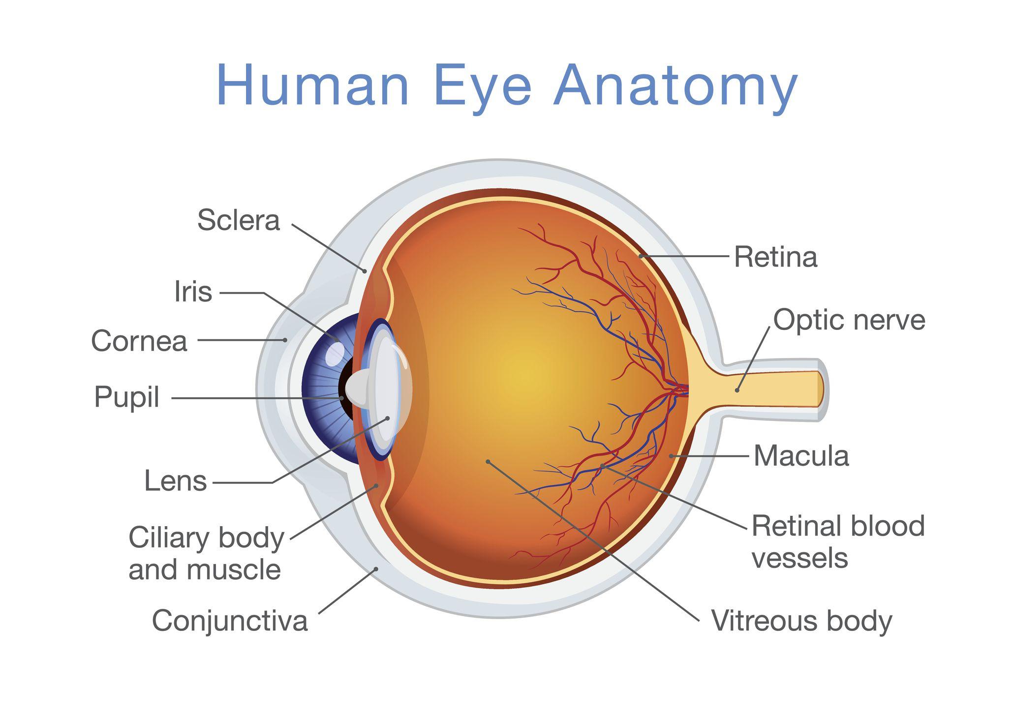 viziune astigmatism ochi