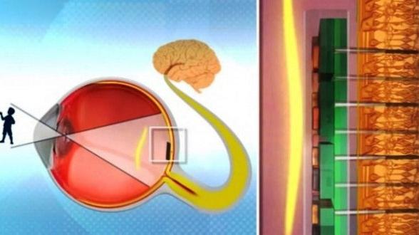 a redat vederea orbilor vitamine pentru îmbunătățirea medicamentelor pentru vedere