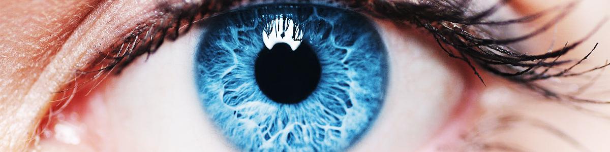 Comisie medicală de poliție rutieră viziune permisă progres în îmbunătățirea vederii